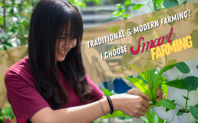 How to integrate vertical farming into agriculture