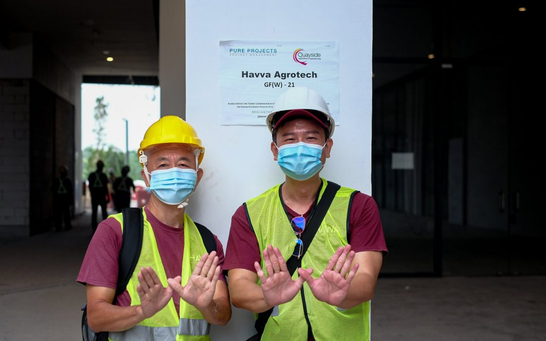 HAVVA collaborate with Gamuda to build the first urban farm in  Quayside Mall at Selangor