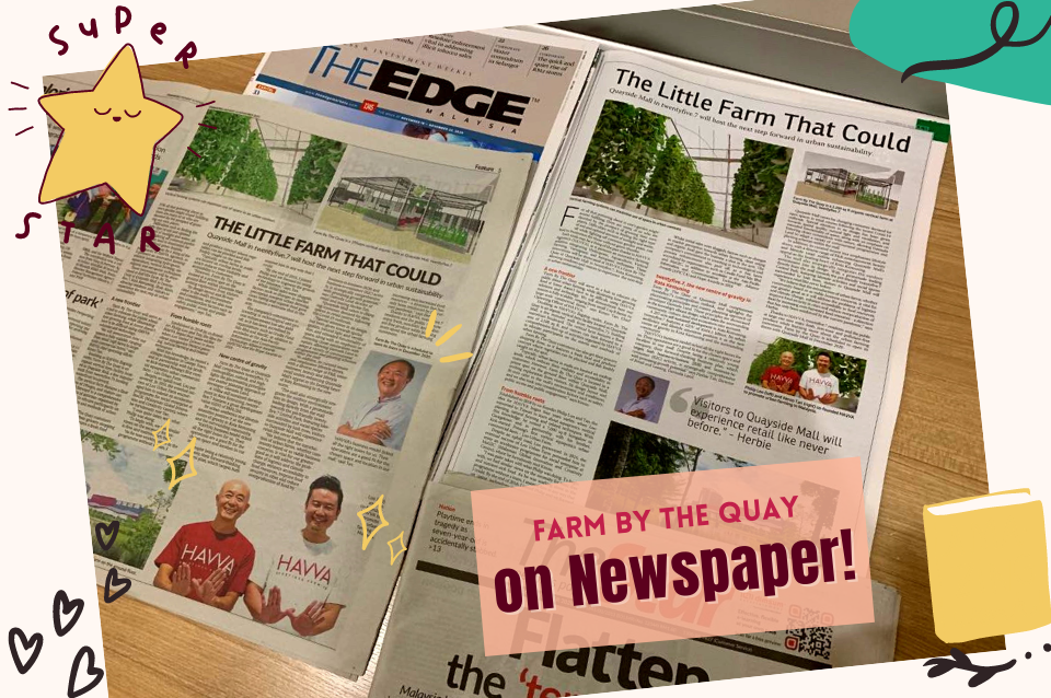 Headline in The Star- The 1st urban farm in a mall that HAVVA collaborate with Gamuda