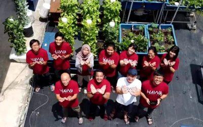 Cradle – Vital partner of HAVVA in the agritech startup journey